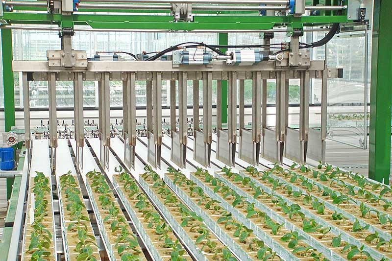 Robotter tager planter op og sætter dem ned på den smalle led