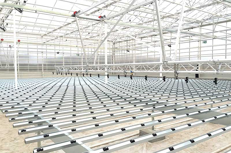 Galvanized steel propagation area