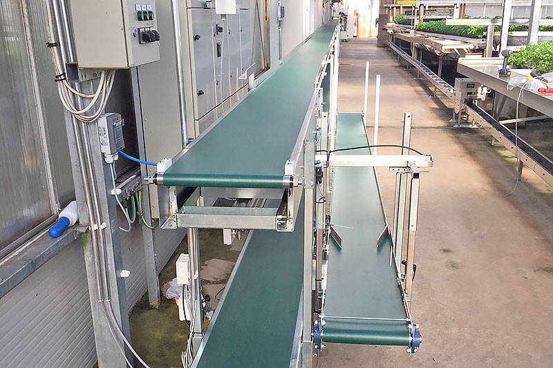 Conveyor belt for packing area