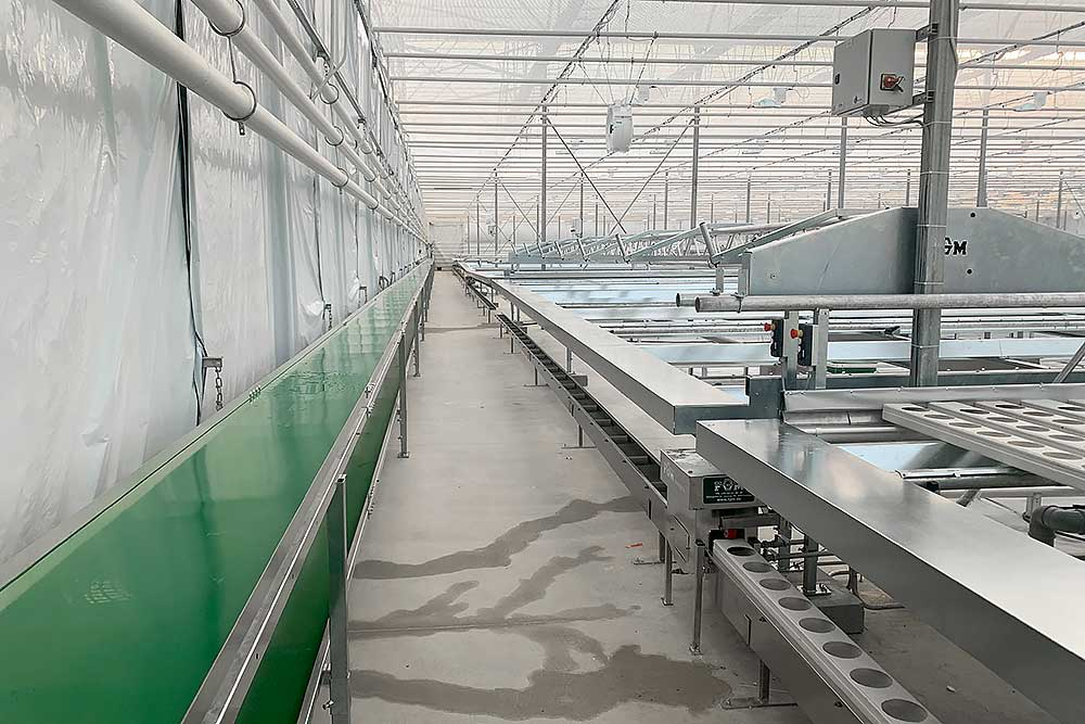 Gutter system with conveyor belt
