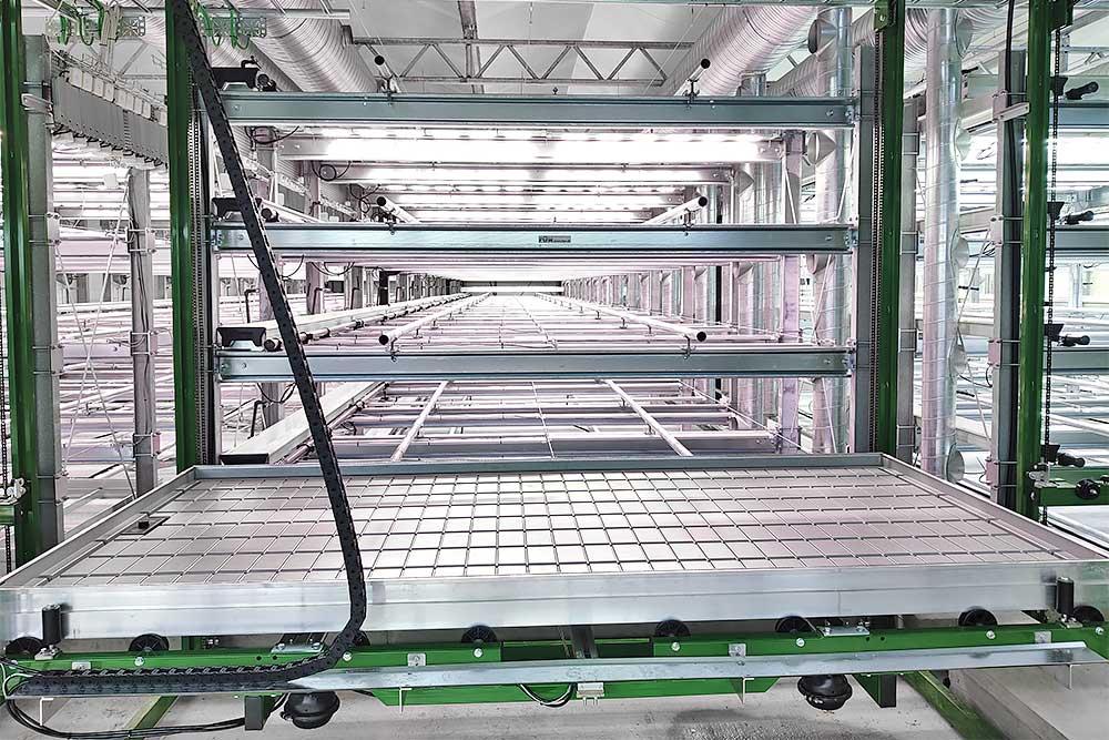 Vertical farming færdigt anlæg inden driftstart