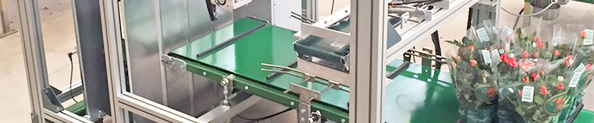 Bagging machines and tray filling machines